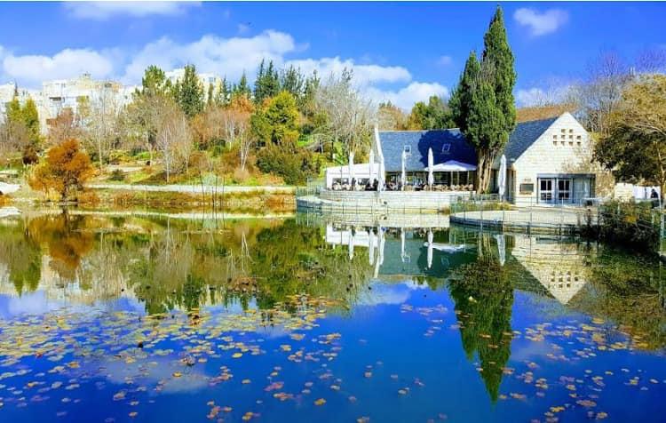 .'Tu Bishvat' nueva actividad en línea desde el Jardin botánico de Jerusalén